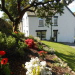 Cottage garden and lawn